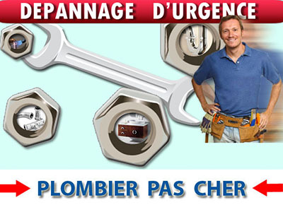 Canalisation Bouchée Thoiry 78770
