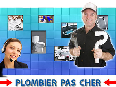 Wc Bouché Ville d'Avray 92410